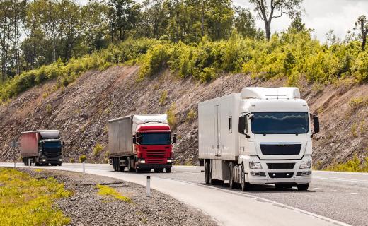 Prevención de la contaminación: establecen límites máximos permisibles de emisiones atmosféricas para vehículos automotores